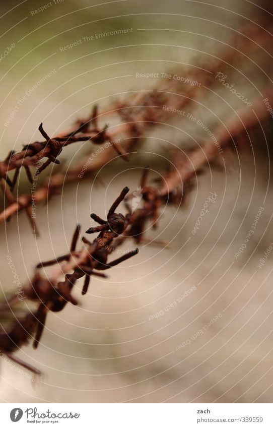 Freedom Metal Brown Fear Gloomy Threat Safety End Fence Rust Border Watchfulness Distress Bans Hatred Barbed wire