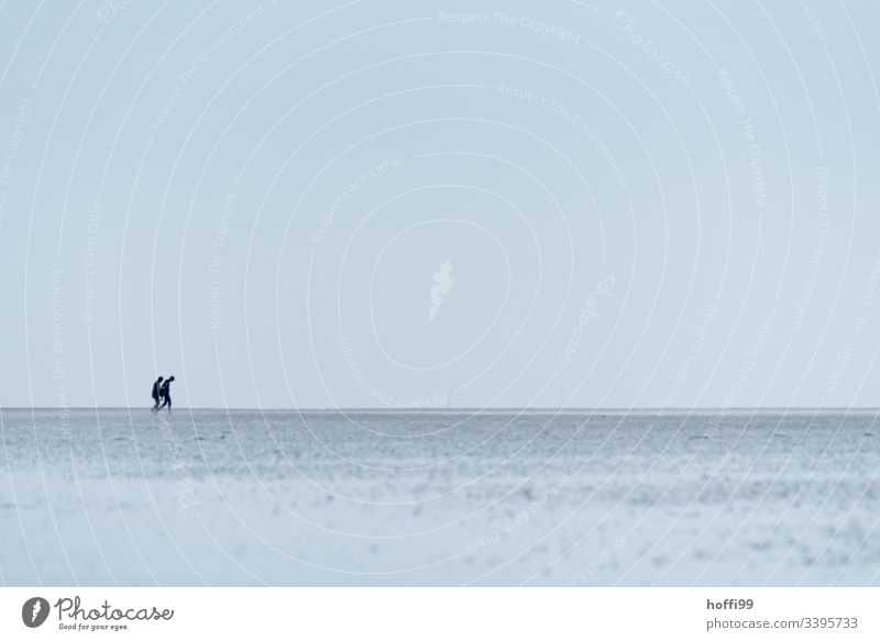 two people in the Wadden Sea - mudflat walking Walk along the tideland Mud flats Lakeside National Park Cloudless sky Group Dawn Morning North Sea