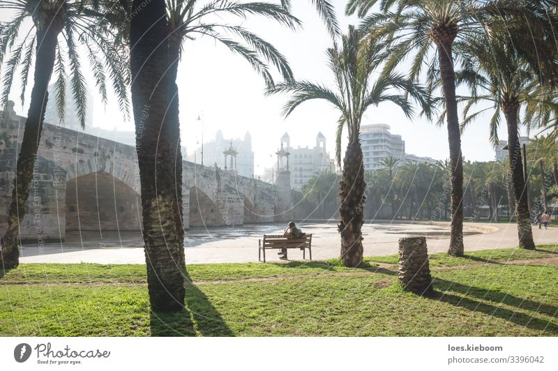 Turia river park under the Puente del Mar, Valencia, Spain bridge puente del mar valencia architecture building city cityscape landmark spain spanish town
