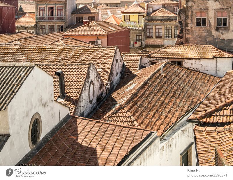 Roofs of an old town Portugal Porto roofs pediment Architecture Old town Roofing tile Historic