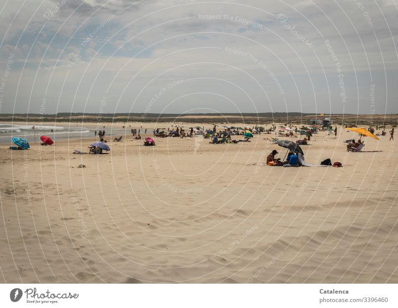 Well frequented, wide beach landscape on a hot summer day Beach Vacation & Travel Relaxation Coast Sand people vacation Ocean Summer Sky Exterior shot