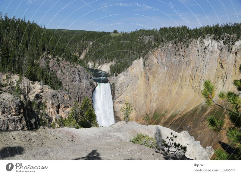 yellowstone national park the nature Wyoming Wonder Public Holiday Scene Hot Destination glorious Landscape faithful Mountain Americas view travel Water Nature
