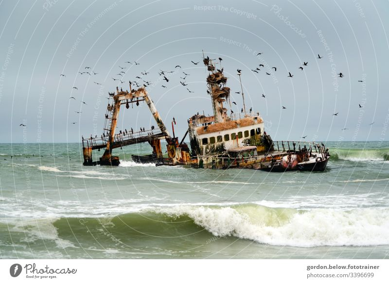 #Namibia sea swallows fishing boats daylight Pamorama photo Light and shadow little colour Holiday and recreation no fauna many birds are circling the ship