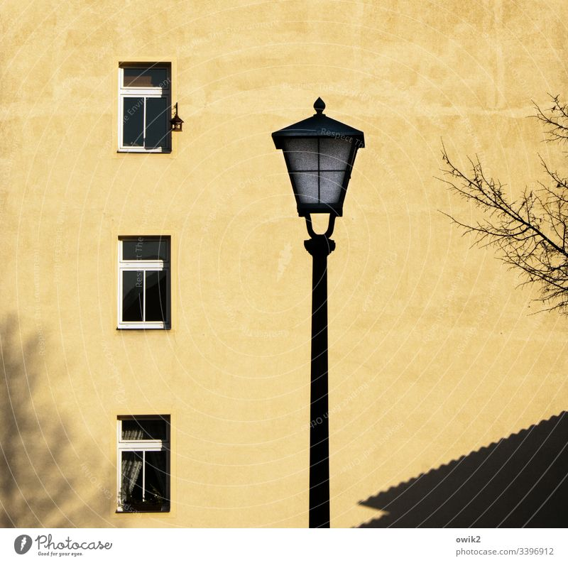 Dream in mustard yellow Wall (building) Facade House (Residential Structure) Building Window Lantern Street lighting Silhouette Tree twigs Gloomy tranquillity
