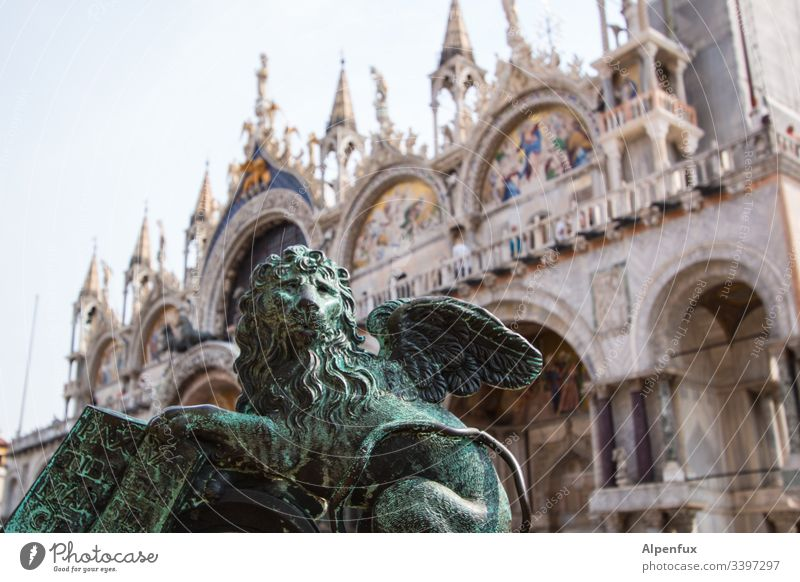 Semolina Lion Statue St. Marks Square Venice Colour photo Exterior shot Italy Landmark Vacation & Travel Tourist Attraction Deserted Architecture Day Port City