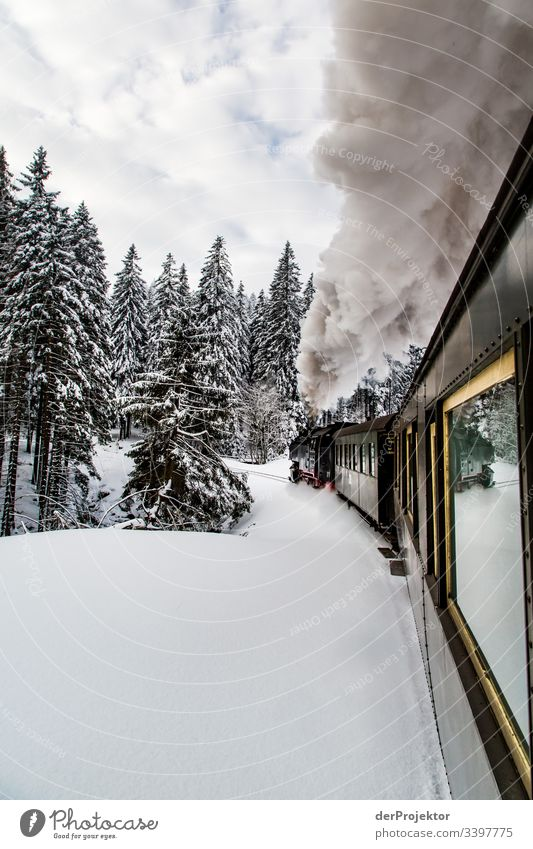 By train through the wintry Harz mountains II Sympathy Copy Space bottom Exterior shot Multicoloured Saxony-Anhalt Colour photo Deserted Copy Space right