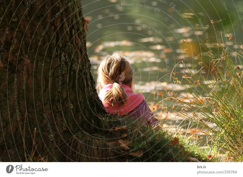 Chilling at the crickets Relaxation Calm Vacation & Travel Trip Parenting Study Schoolchild Human being Child girl Infancy Environment Nature Plant Autumn
