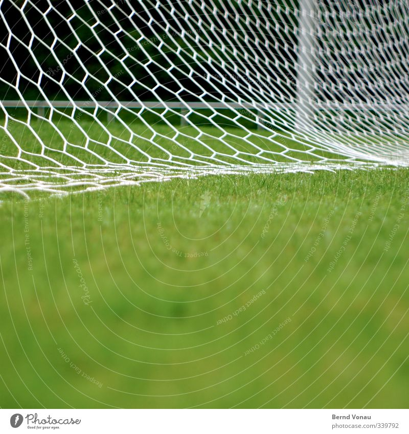 hexagonal lock Athletic Leisure and hobbies Sports Fitness Sports Training Foot ball Football pitch Soccer Goal Net Grass surface Lawn Movement To hold on