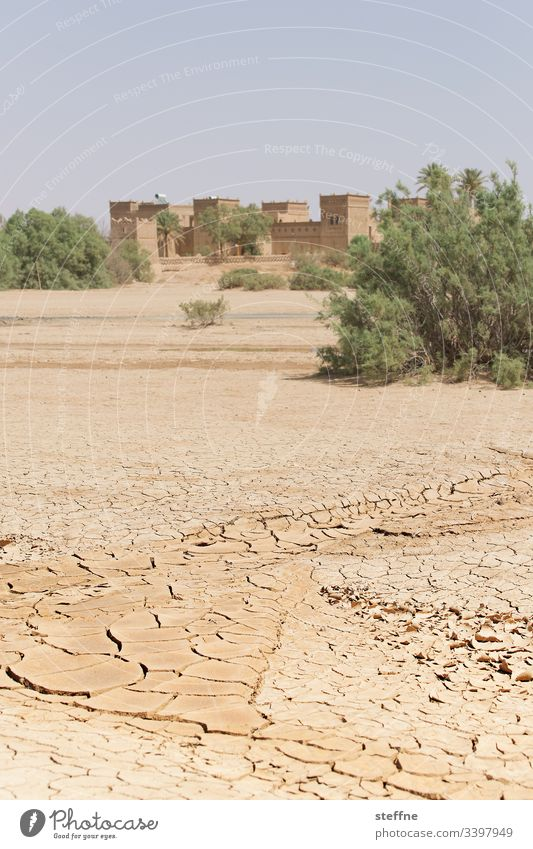dried out ground with oasis in the background Desert aridity parched Drought Climate change Oasis Morocco lack of water