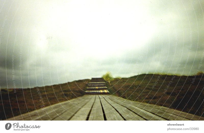 wooden walkway Wood Footbridge Vacation & Travel Ocean Gray Sylt Wooden board Beach dune Sky