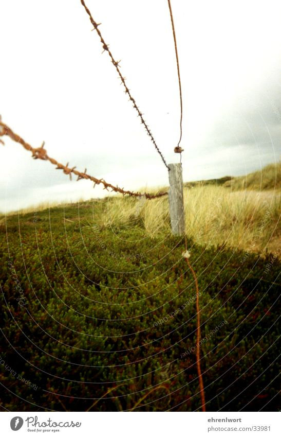 barbed wire fence Barbed wire Fence Sylt Vacation & Travel Environmental protection Loneliness Clouds Gray Far-off places Beach dune Rust