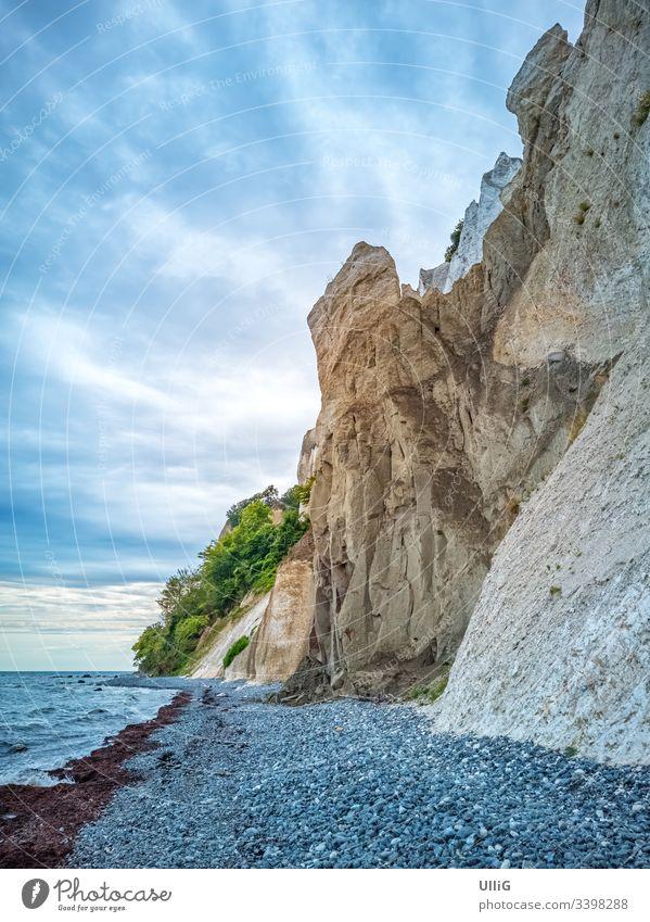 Chalk cliffs of Moens Klint, Denmark, Europe. shore chalk cliff chalk rock steep coast beach landmark landscape nature Baltic Sea travel Moen Island Scandinavia