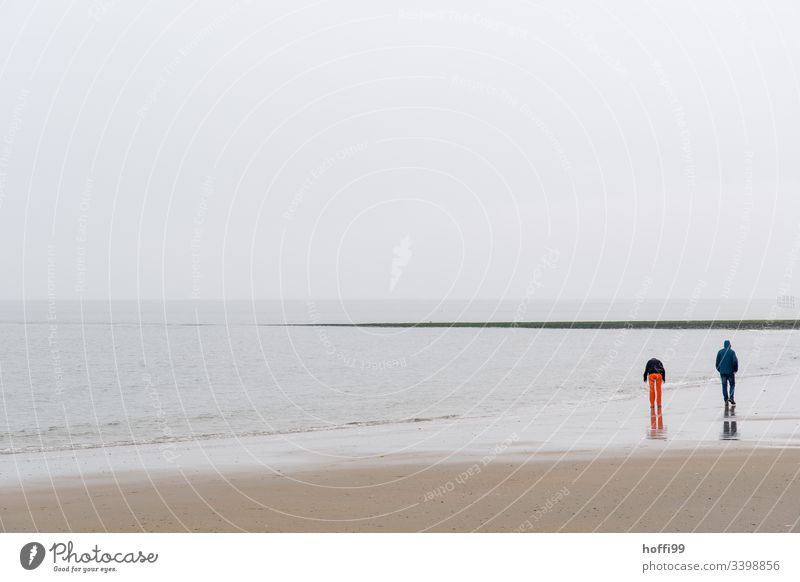Couple goes for a walk on the beach in winter in fog red trousers Red Fog Beach North Sea coast Mud flats Horizon Coast Island Vacation & Travel Sandy beach
