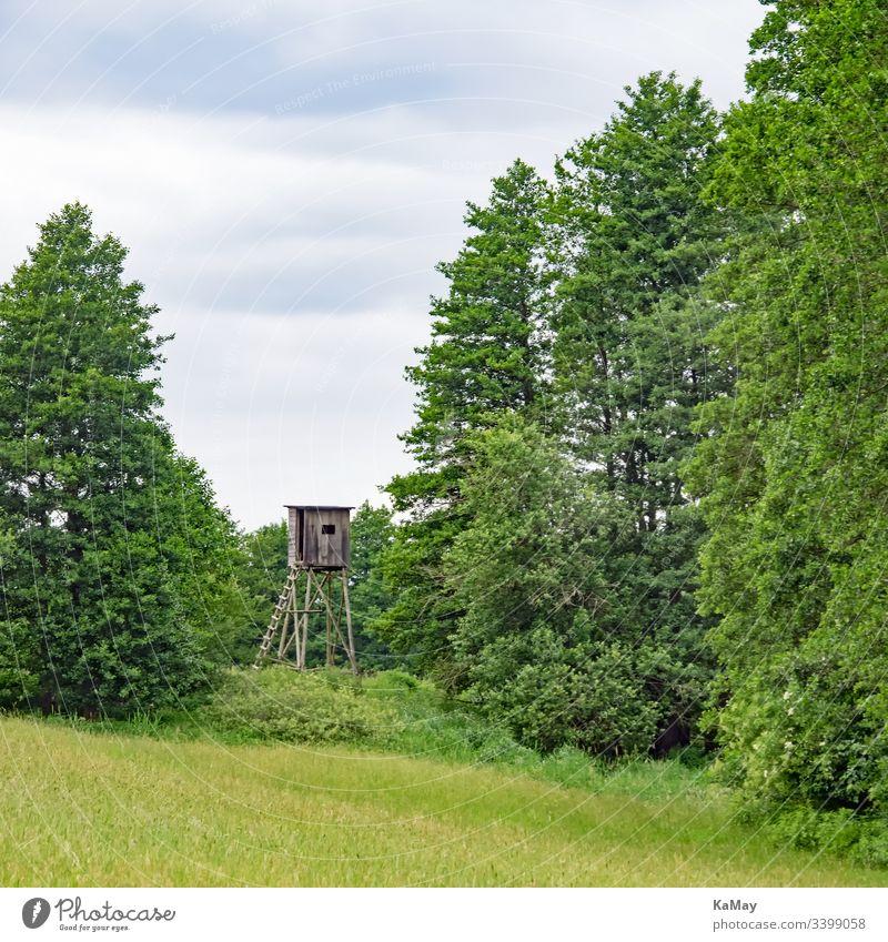 High seat in the landscape of Mecklenburg-Vorpommern, Germany Landscape Hunting Blind Meadow trees Mecklenburg-Western Pomerania Nature Deserted Fence