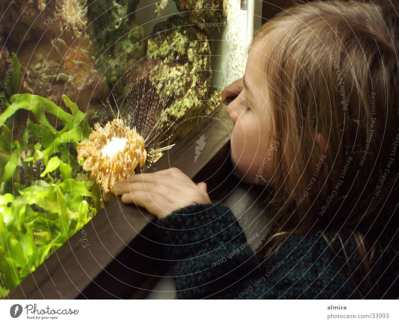 Human being Child Water Girl Green Glass Fish Observe Zoo Discover Aquarium Algae Sea urchin