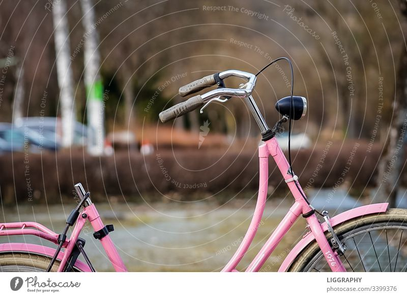 Old bicycle Bicycle Transport bicycle stand lose finder's reward Theft broken stolen Lake Wörthersee vacation Iron man purple Saddle Exterior shot Deserted