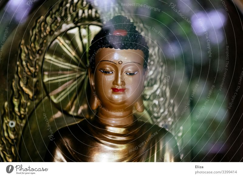 Splendid, beautiful, colorful Buddha figure with a lot of gold Buddhism Religion and faith Statue of Buddha Meditation Belief Yoga Zen Asia Culture Colour photo