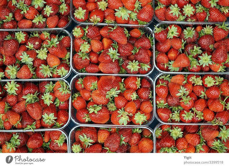 Strawberries on Display at Local Market ripe nutrition berry health color closeup agriculture background bazaar bodrum bodrum turkey delicious dessert diet food