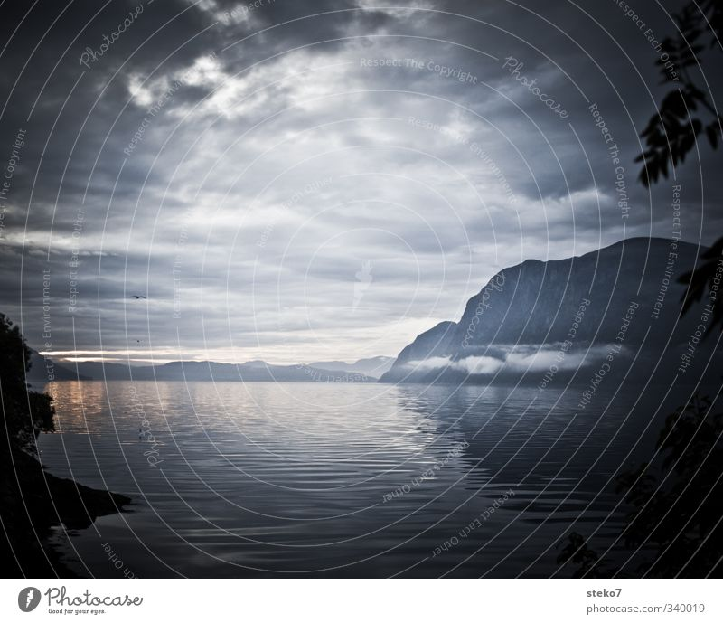 Water Clouds Mountain Gray Horizon Fog Hope Norway Bad weather Fjord