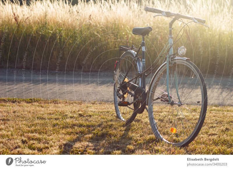 Old bicycle Bicycle old bicycle Summer Trip sunshine Cycling Sports Fitness Colour photo Exterior shot