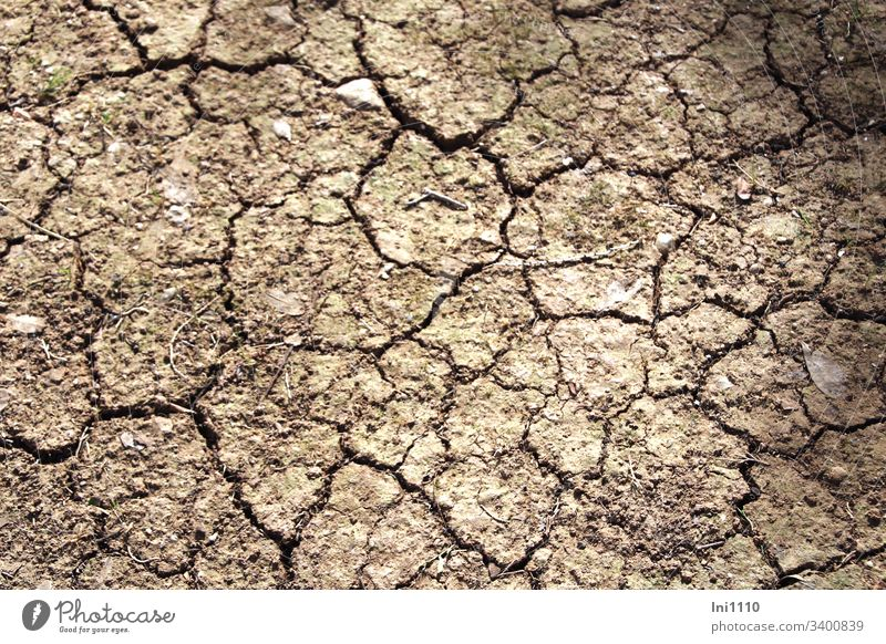 parched ground with cracks in a park Environment aridity Climate change lack of water cracks in the floor structure Majorca edit Garden care Deserted Beige