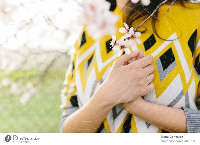 Unrecognizable woman in a yellow sweater holding a branch of almond blossoms with hands on chest. Amazing beginning of spring. Selective focus. Femininity, feminist and feminine concept.