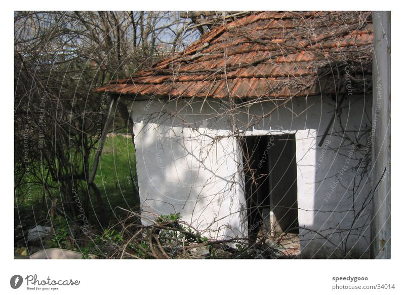 No home? House (Residential Structure) Barn Empty Turkey Obscure Hut Old Loneliness