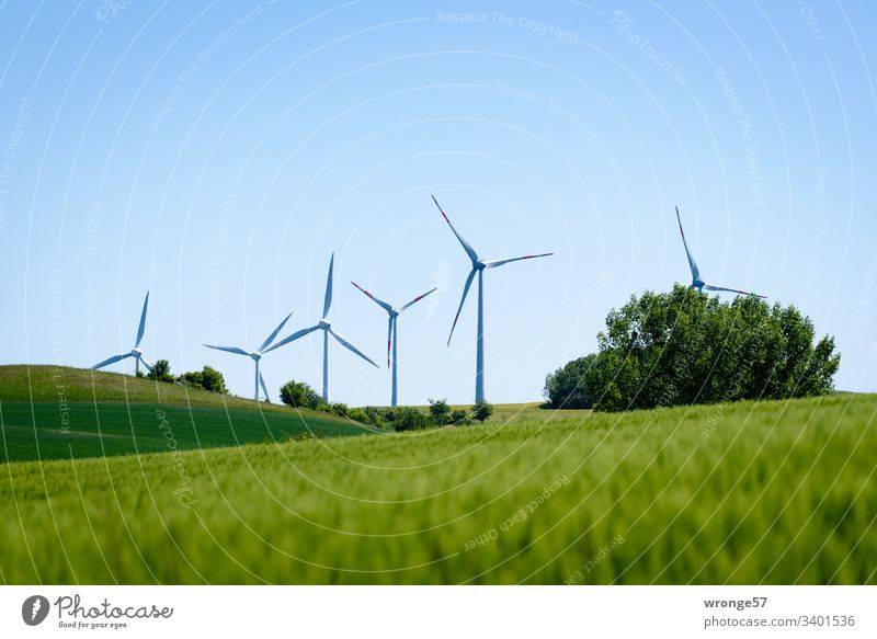 climate change| renewable energies Climate change Future energy revolution Energy industry green energy Renewable energy Exterior shot Colour photo Advancement
