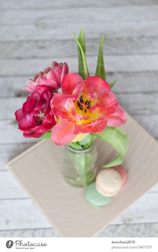 spring awakening Spring Tulip Plant Leaf Blossom Flower Bouquet Vase macarons Interior shot Colour photo Green Blossoming Day Pink Nature Red Decoration