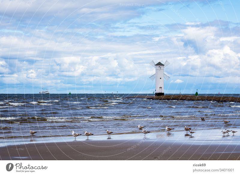 Pier on the Baltic Sea coast in Swinemünde, Poland Mole Lighthouse Seagull Windmill Tower Usedom Coast Baltic coast swinoujscie Ocean Landmark vacation Water