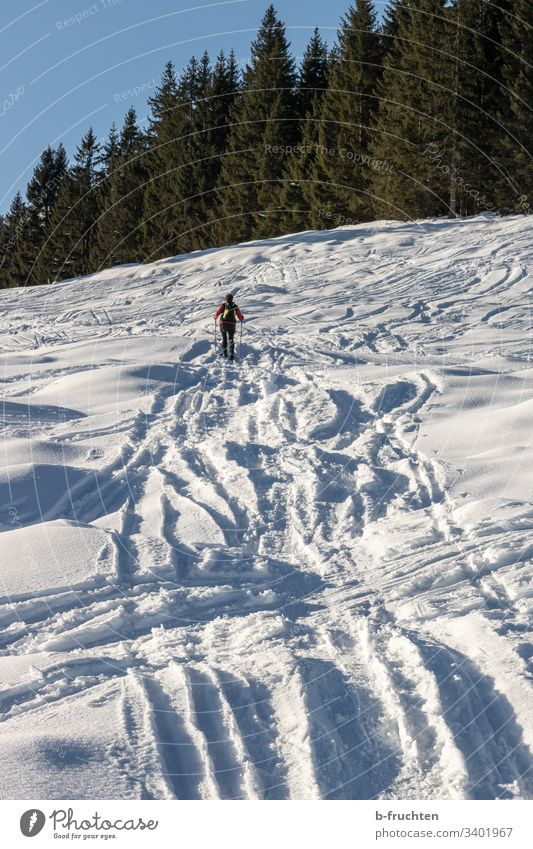 Snowshoeing, many tracks in the snow Tracks Hiking hike Snow shoes Sports Fitness Mountain Exterior shot Nature Human being Winter Alps Leisure and hobbies
