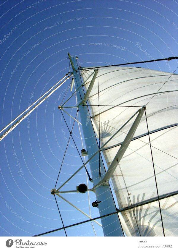 Sails in the wind Sailing Ocean Watercraft Catamaran Vacation & Travel Sports Wind Sky