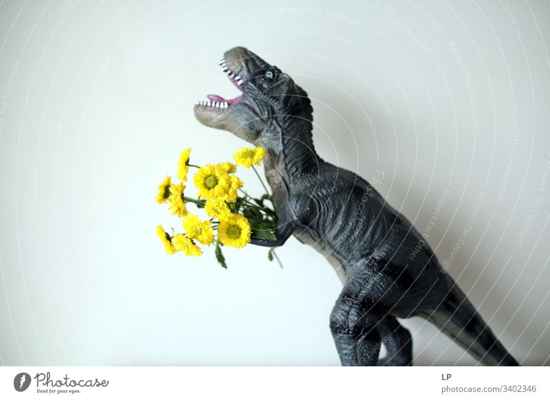 T rex with yellow flowers Dinosaur flowers spring Animal Birthday Humor scary Fight Couple Man Teeth Roaring Reptiles Dragon Primitive times Animal portrait