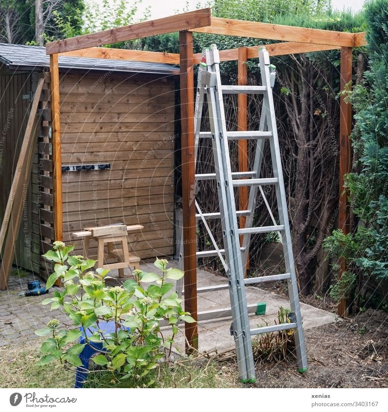Construction site in the garden with ladder Garden Ladder pergola timber construction Footstool Drill labour Plant Nature Wood Craft (trade) Tool Hydrangea DIY