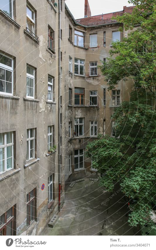 Backyard Berlin Prenzlauer Berg Tree Town Deserted Exterior shot Capital city Colour photo Old building Manmade structures Wall (building) Facade Old town