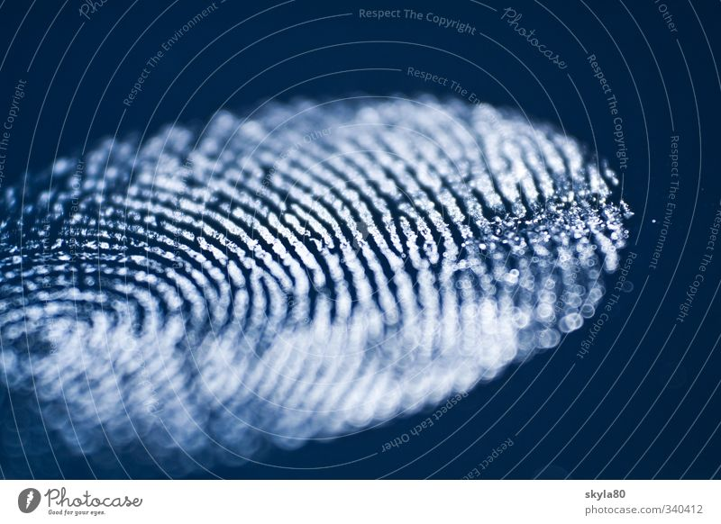 search for clues Fingerprint Imprint Identify Identity Tracking Evidence Tracks forensics Perpetrator Assassin Criminality Symbols and metaphors
