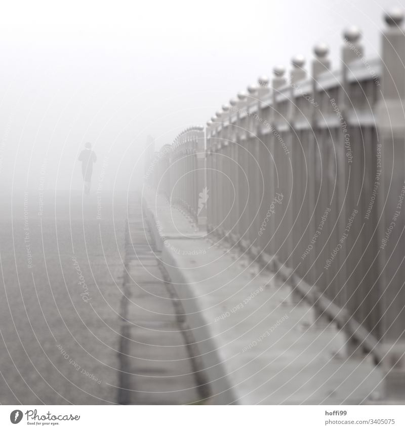 bridge fog and jogger Sportsperson Jogging Youth (Young adults) Handrail Bridge Walking Fitness Silhouette Shadow Light Dawn Exterior shot Healthy Freedom