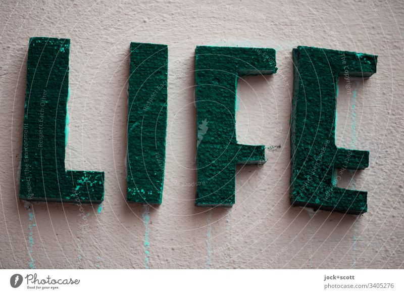 Life is what we make of it, it always has been, it always will be Decoration Capital letter Word Typography Three-dimensional Surface Plastered