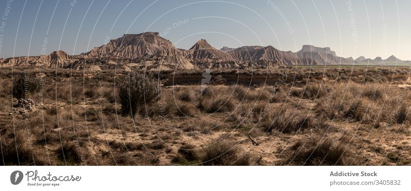 Dry plants growing in desert grass dry mountain badlands panorama sunny daytime nature landscape bardenas reales navarre spain scenic hill picturesque