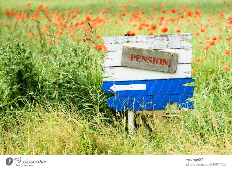 Blue and white wooden board with a reference to a pension at the edge of the field. wooden panel Blackboard Signage clues indicative Colour photo Deserted