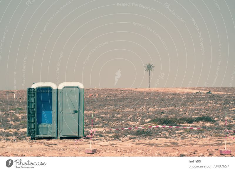 mobile toilet in desert with flutterband and palm tree Rental toilet toilet house Toilet Meeting 00 Latrine Trashy absurt Urinal Desert Hot Esthetic Warmth