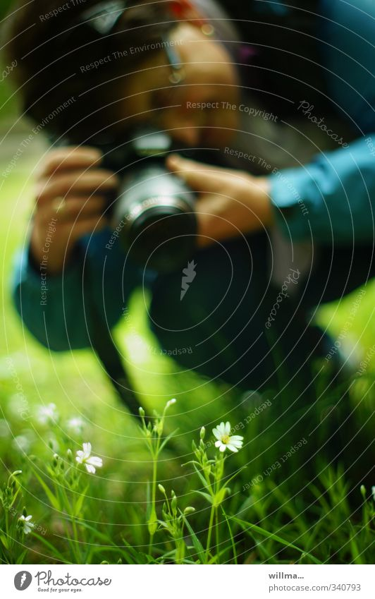 photographer squats in the grass and takes pictures of meadow flowers Leisure and hobbies Camera Human being Woman Adults 1 Nature Plant Tree Meadow Crouch