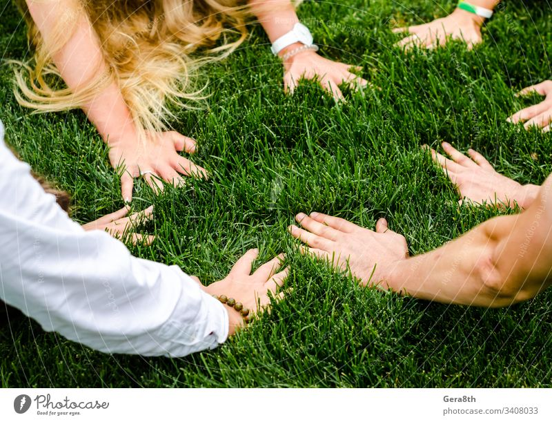 hands of people next to each other on green grass bright close day field fingers group of people hair lawn limb meadow natural nature part of the body person