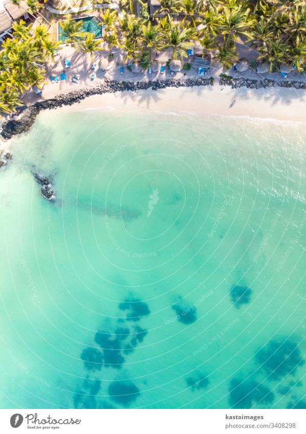 Aerial view of amazing tropical white sandy beach with palm leaves umbrellas and turquoise sea, Mauritius. beachfront resort travel pool hotel blue summer water