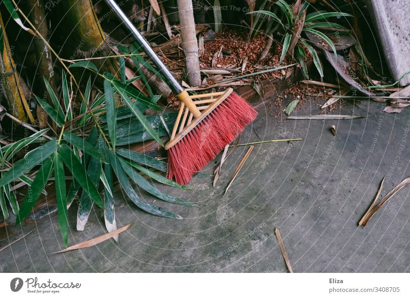 Broom with red bristles next to plants on grey stone floor Garden sweep Stone floor foliage leaves Green Red Bristles Ground Tropical Southern Gardening