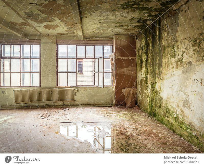 Green Room - Wallpaper factory Norta Langenhagen lost place Urbex abandoned forsake sb./sth. Ruin ailing