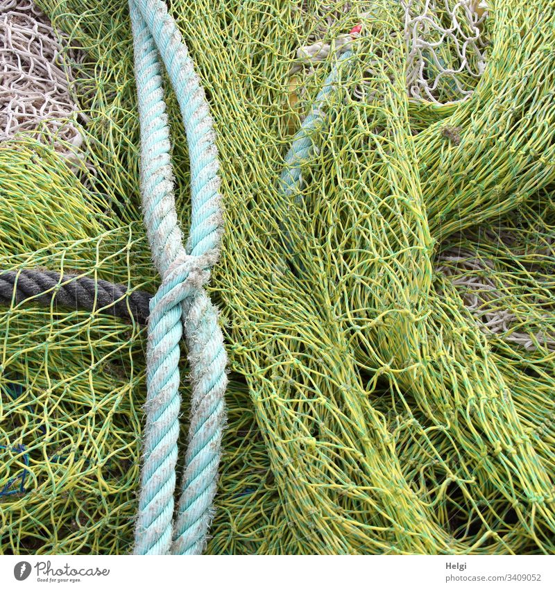 rope team | fishing nets and ropes in the fishing port Fishing net Rope Fishing port Colour photo Exterior shot Close-up Net Network Fishery