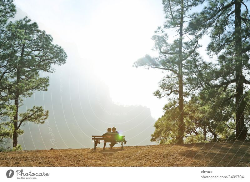 View of the Caldera de Taburiente La Palma recover relax outlook Bench hikers Hiking vacation hiking area Tree Back-light Light flooded with light