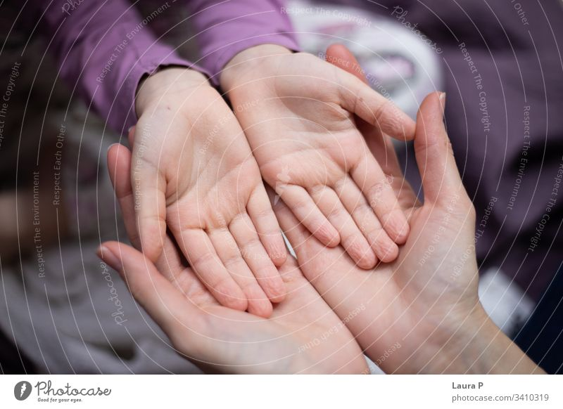 Mom holding daughter hands in her hands safety connected beautiful parent mom adult child love care caring Love Mother Child Adults Woman Parents Daughter