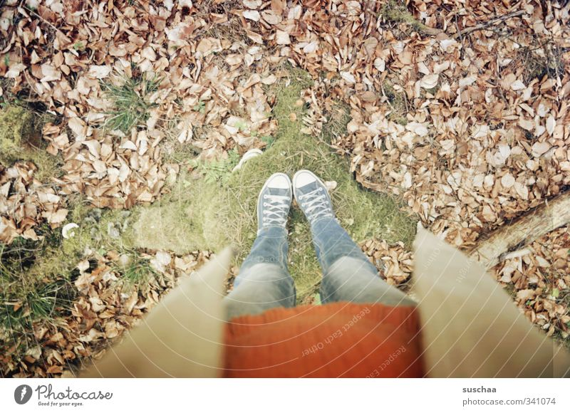 half suschaa Feminine Girl Young woman Youth (Young adults) Woman Adults Legs Feet 1 Human being 18 - 30 years 30 - 45 years Environment Autumn Winter Moss Leaf